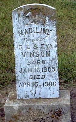 Vinson Family of Hopkins Co , KY, Maury/Carroll/McNairy Co