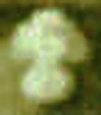 Enlargement of Cap Badge Image 1