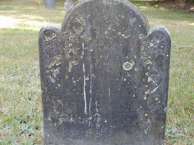Rachel Sheffield Morse
