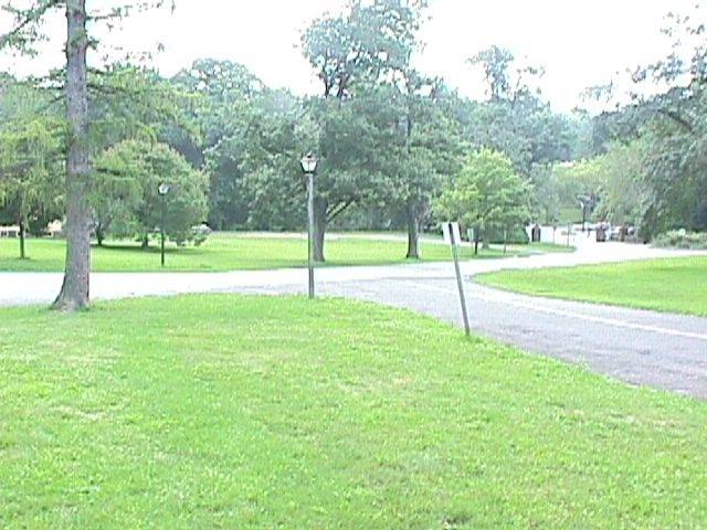 Picture Of Park Near Swamp Angel - swmang26.jpg - July 30, 2000