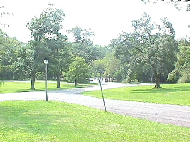 Picture of Park near Swamp Angel - swmang43.jpg - July 30, 2000