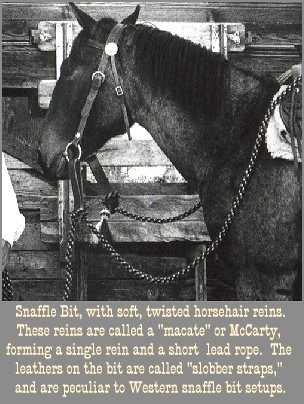 Snaffle bit & bridle, photo by G. M. Atwater
