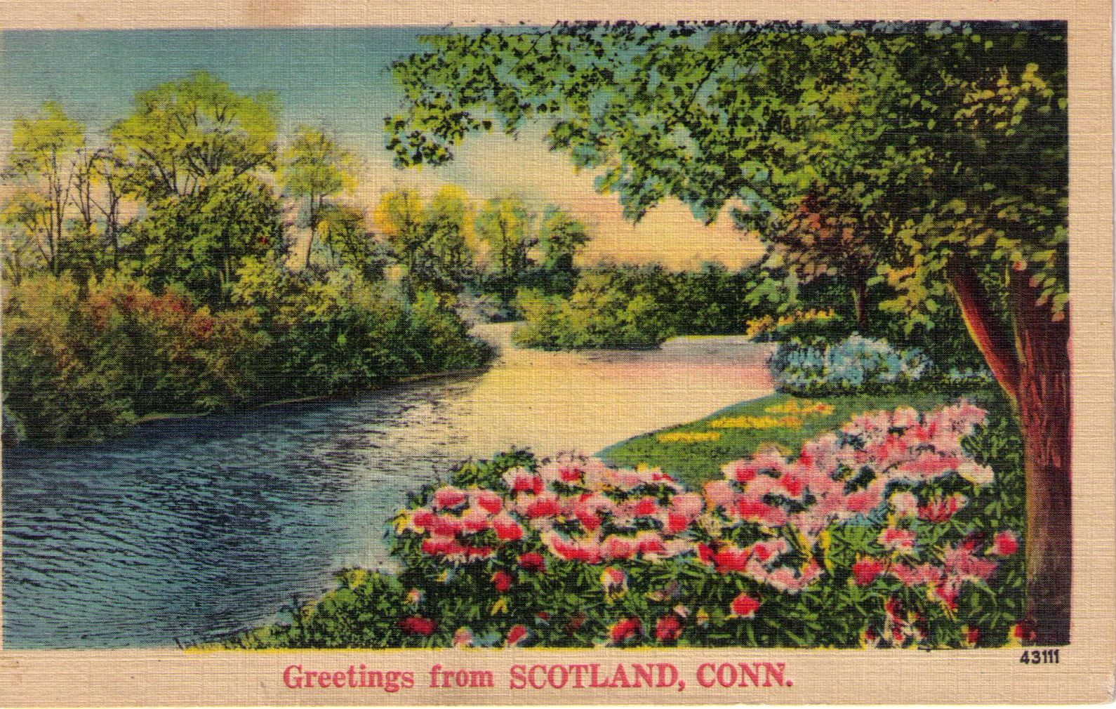NYCE generic souvenir postcards circa 1940s